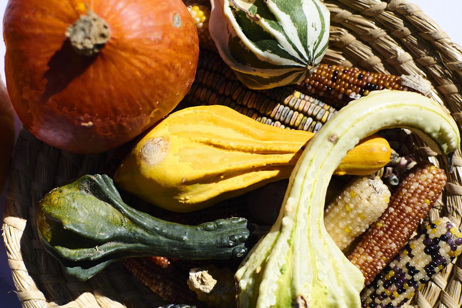 Kürbisse, Zierkürbisse und Ziermais finden sich als Deko zum Herbst in allen Ecken der Kugleralm Ebersberg