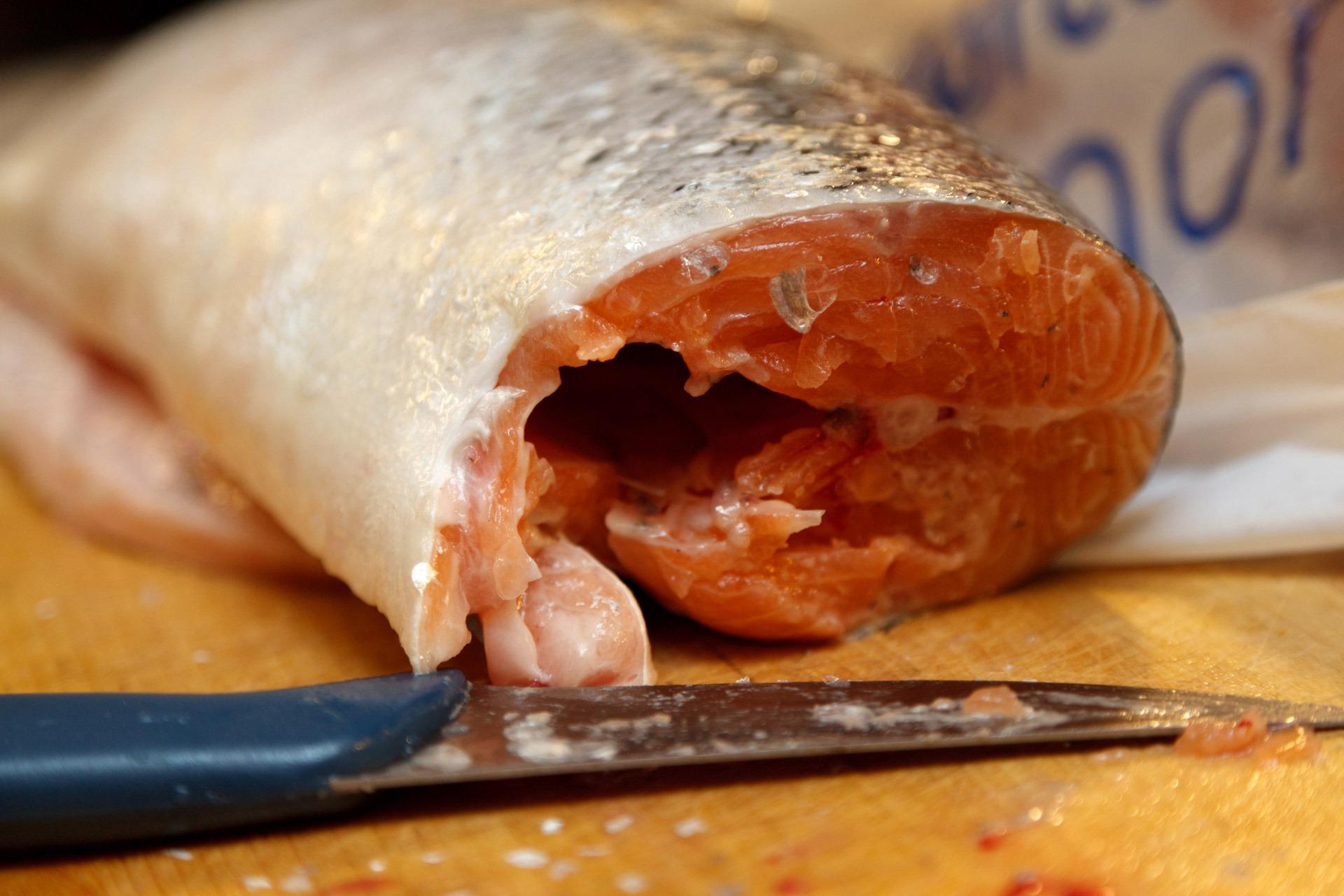 Um an das Fisch Filet zu kommen, muss erst der Kopf des Fisches hinter den Kiemen abgetrennt werden