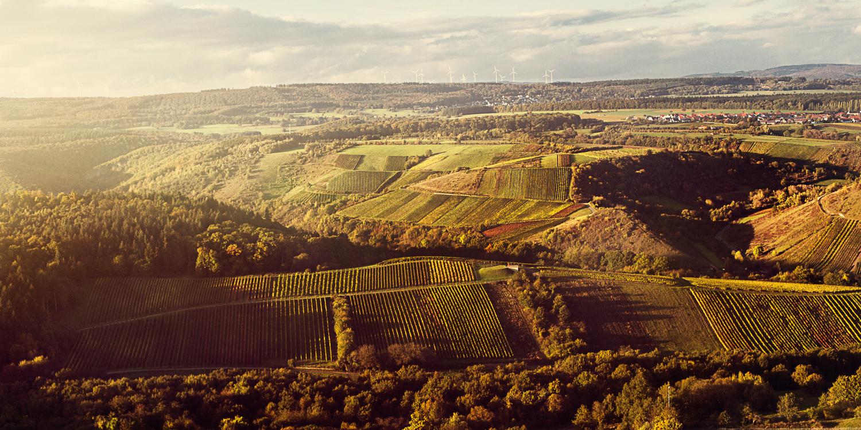 Die Weinberge Felseneck gehören zu dem Weingut Schott im Weinanbaugebiet Nahe